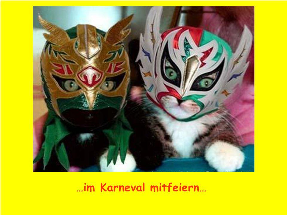 …im Karneval mitfeiern…