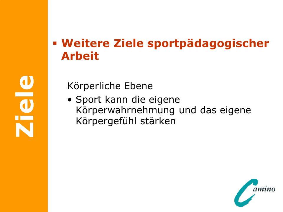 Ziele Weitere Ziele sportpädagogischer Arbeit Körperliche Ebene