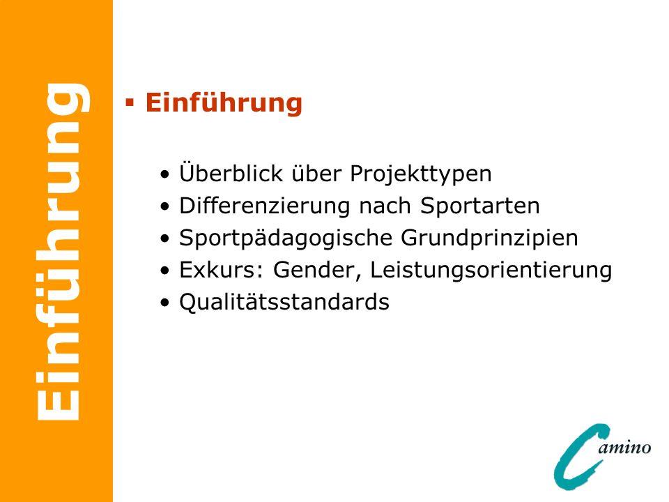 Einführung Einführung Überblick über Projekttypen