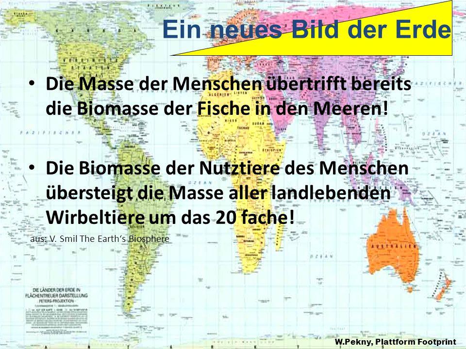 Ein neues Bild der Erde Die Masse der Menschen übertrifft bereits die Biomasse der Fische in den Meeren!