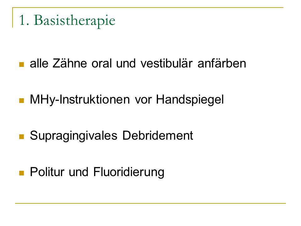 1. Basistherapie alle Zähne oral und vestibulär anfärben
