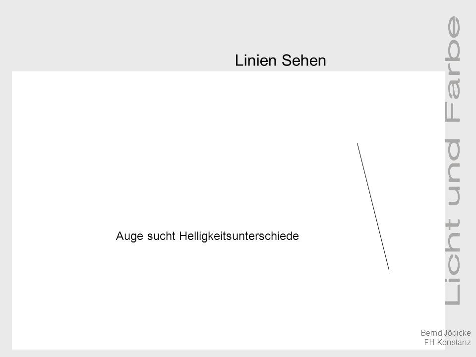 Linien Sehen Auge sucht Helligkeitsunterschiede Bernd Jödicke