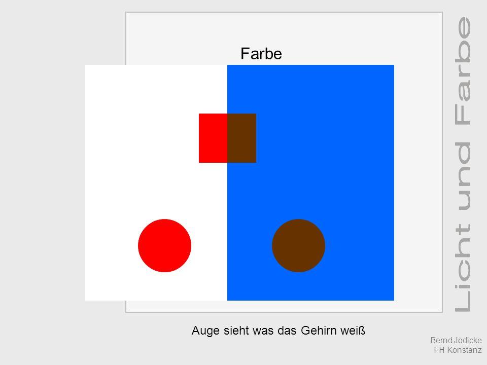 Farbe Auge sieht was das Gehirn weiß Bernd Jödicke FH Konstanz