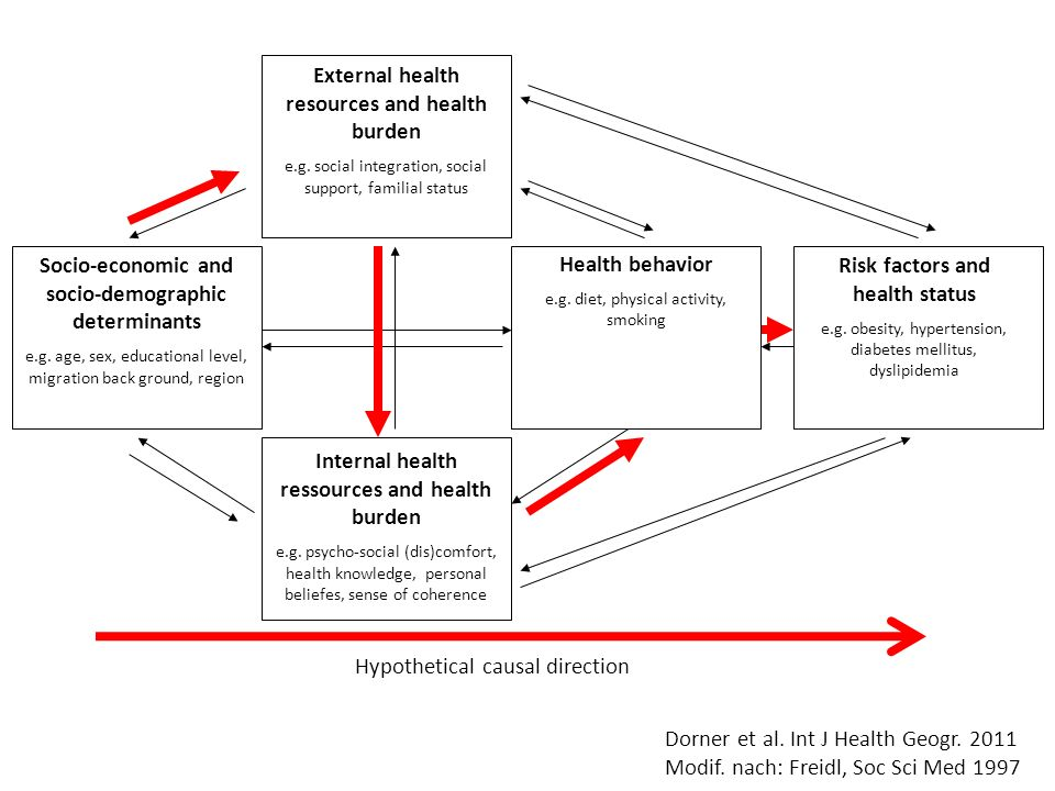 External health resources and health burden