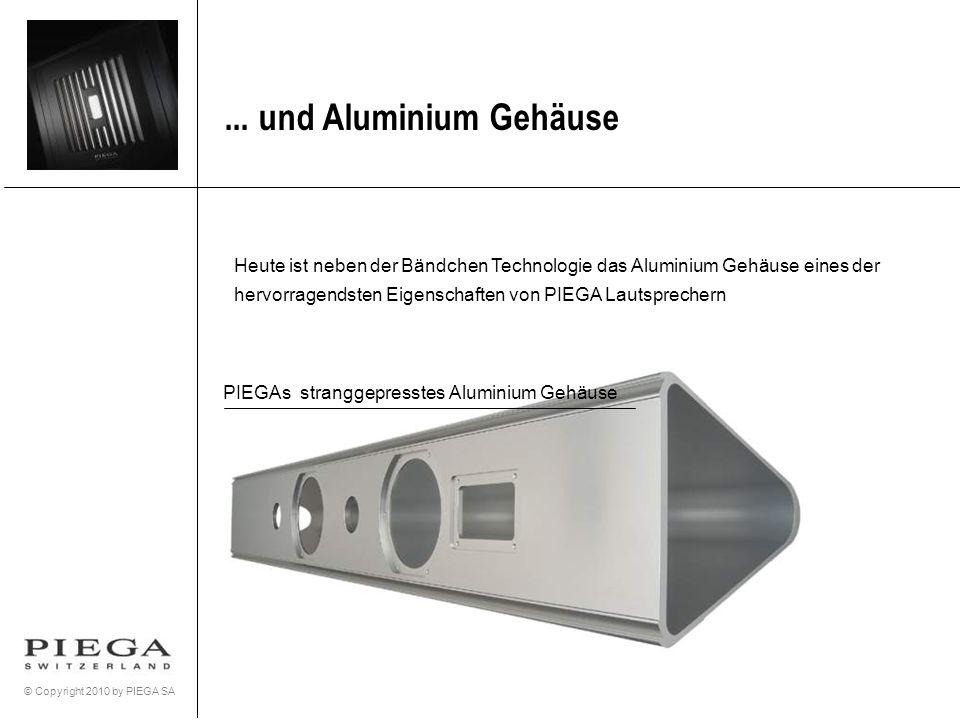 PIEGAs stranggepresstes Aluminium Gehäuse