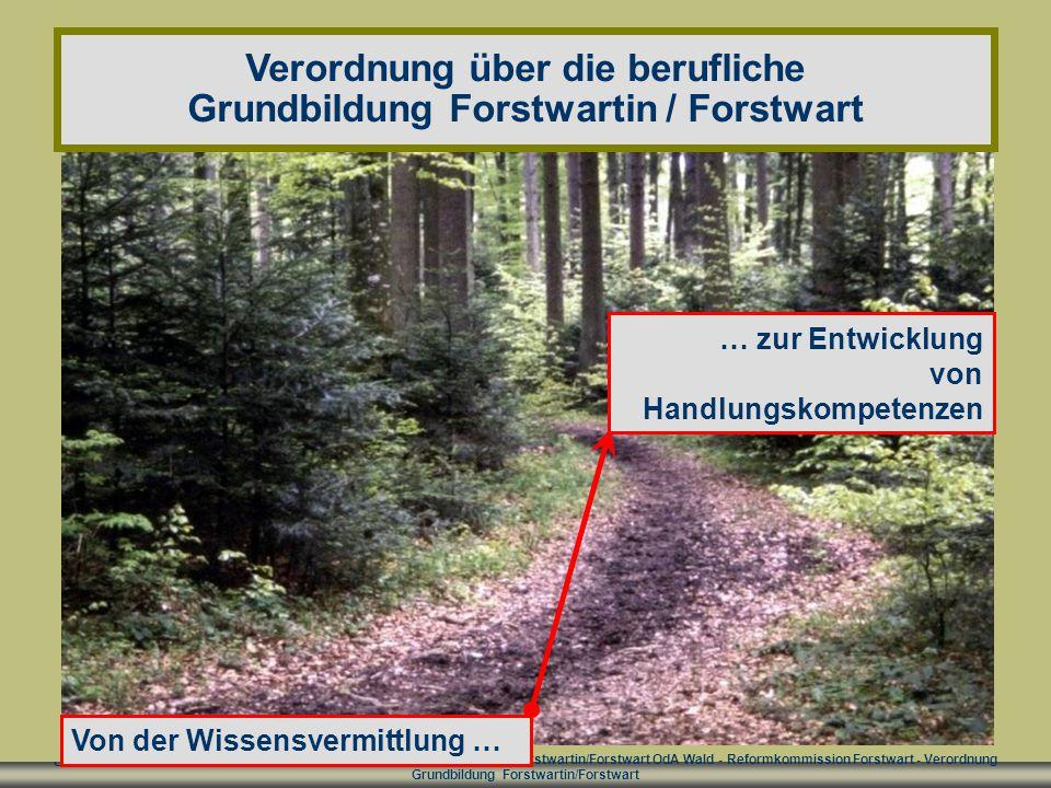 Verordnung über die berufliche Grundbildung Forstwartin / Forstwart