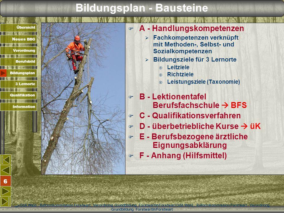 Bildungsplan - Bausteine