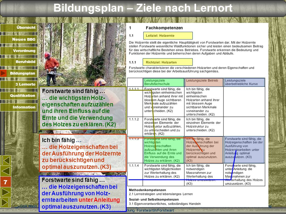 Bildungsplan – Ziele nach Lernort