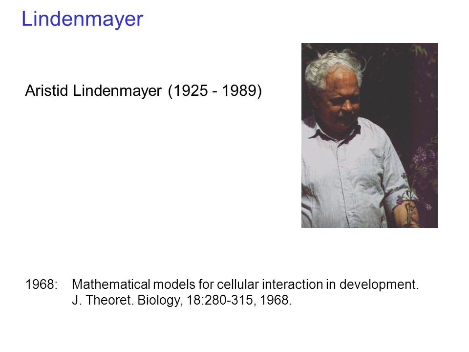 Lindenmayer Aristid Lindenmayer (1925 - 1989)