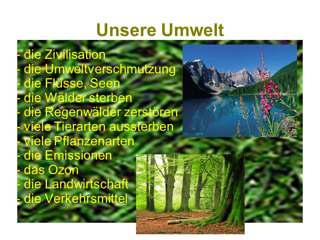 Unsere Umwelt - die Zivilisation - die Umweltverschmutzung