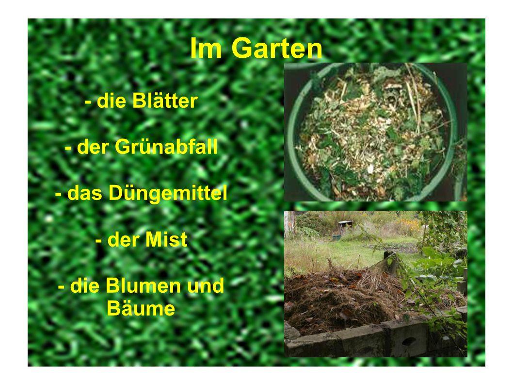 Im Garten - die Blätter - der Grünabfall - das Düngemittel - der Mist