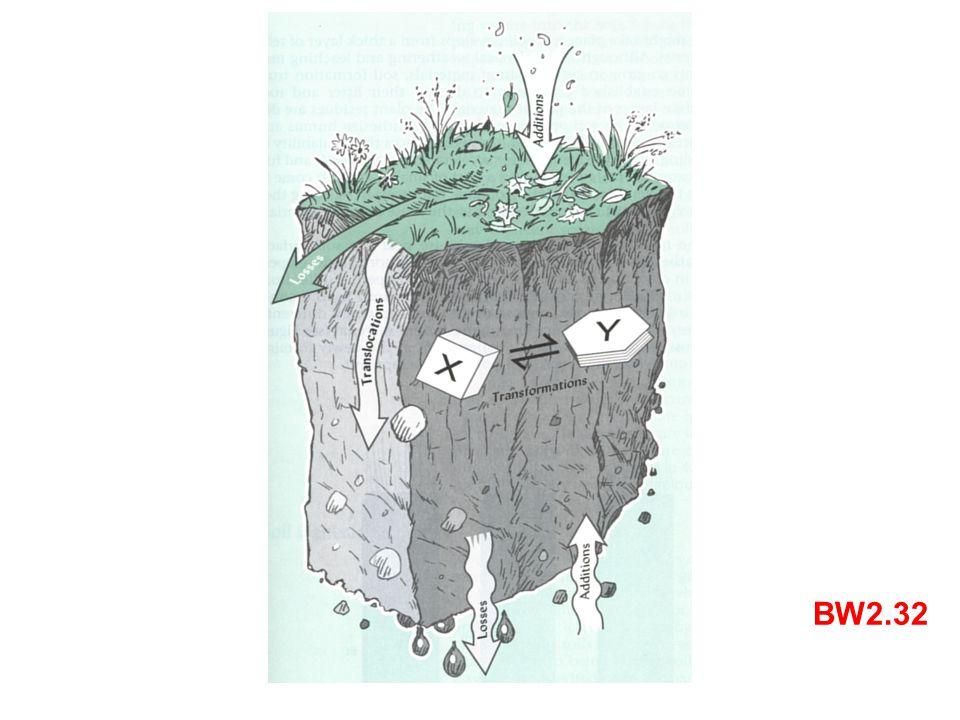Bodenbildende Prozesse können in vier Gruppen unterteilt werden: