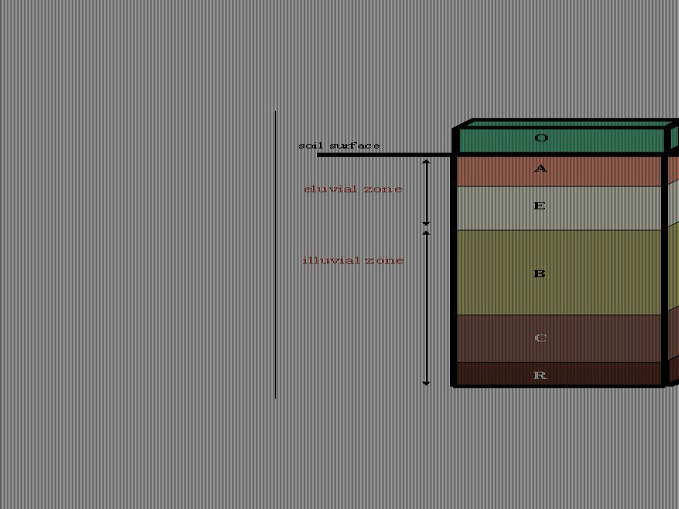 Die vier Grundprozesse der Pedogenese manifestieren sich im Bodenprofil in der Ausbildung von Bodenhorizonten mit den Haupthorizonten O (organische Auflage), A (mineralischer Horizont im Oberboden mit Anreicherung an organischer Substanz und meist, mit Ausnahme der Trockengebiete, Verlust an mineralischer Substanz, E - international, in D: Ae –(mineralischer Horizont im Oberboden mit dem grössten Verlagerungs/Auswaschungsverlust), B (mineralischer Horizont im Unterboden mit verändertem Mineralbestand aufgrund von Verlagerung aus dem Oberboden und/oder Umformung in situ), C – in D: lC – (lockeres Ausgangsmaterial, z.B.