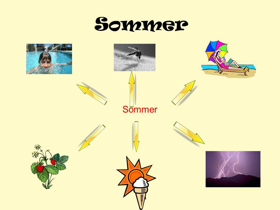 Sommer Sommer