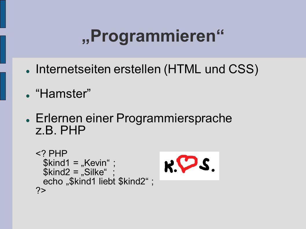 """""""Programmieren Internetseiten erstellen (HTML und CSS) Hamster"""