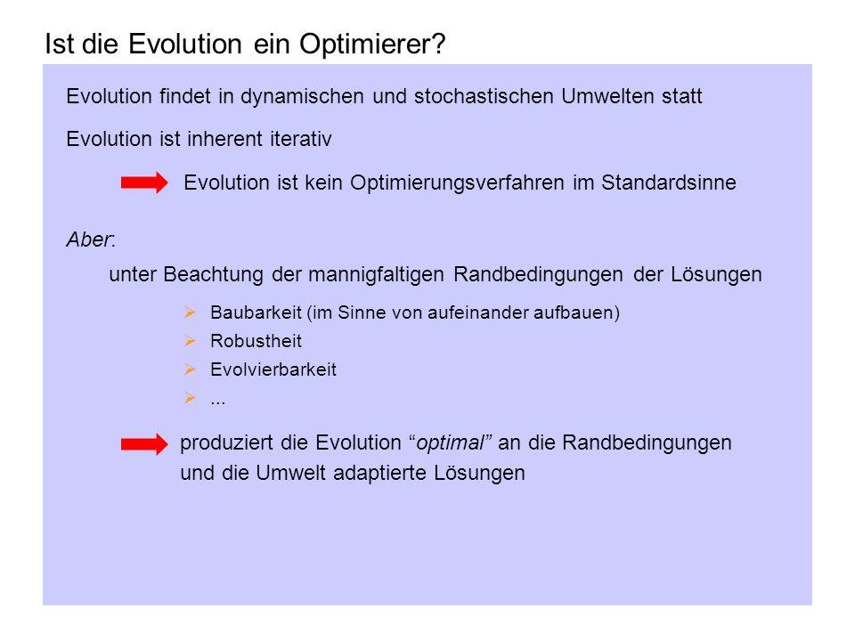 Ist die Evolution ein Optimierer