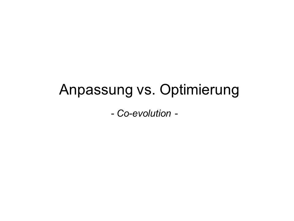 Anpassung vs. Optimierung