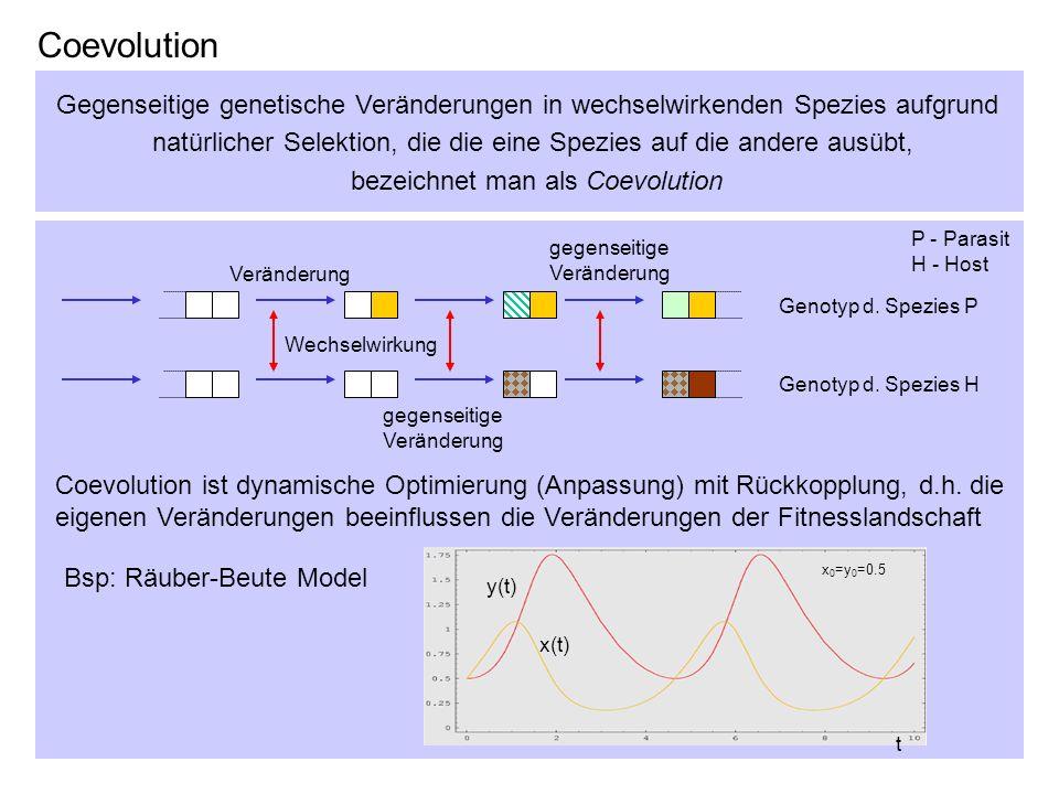 Coevolution Gegenseitige genetische Veränderungen in wechselwirkenden Spezies aufgrund.