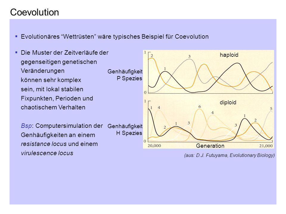 CoevolutionEvolutionäres Wettrüsten wäre typisches Beispiel für Coevolution.