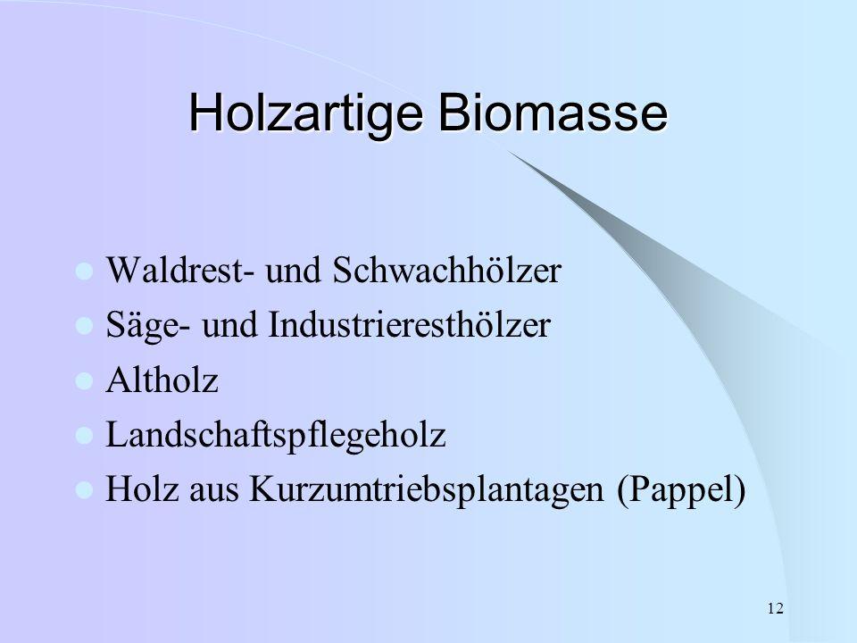 Holzartige Biomasse Waldrest- und Schwachhölzer