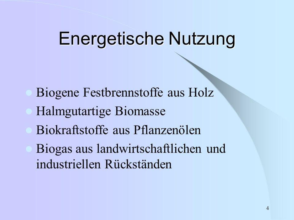 Energetische Nutzung Biogene Festbrennstoffe aus Holz