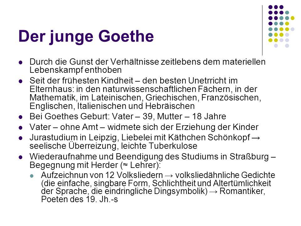 Der junge Goethe Durch die Gunst der Verhältnisse zeitlebens dem materiellen Lebenskampf enthoben.