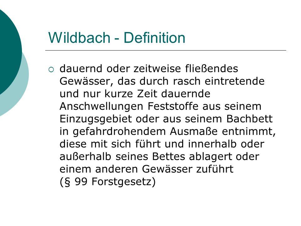 Wildbach - Definition