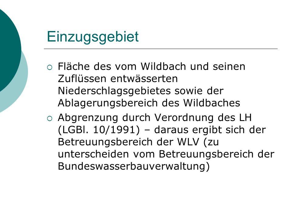 Einzugsgebiet Fläche des vom Wildbach und seinen Zuflüssen entwässerten Niederschlagsgebietes sowie der Ablagerungsbereich des Wildbaches.