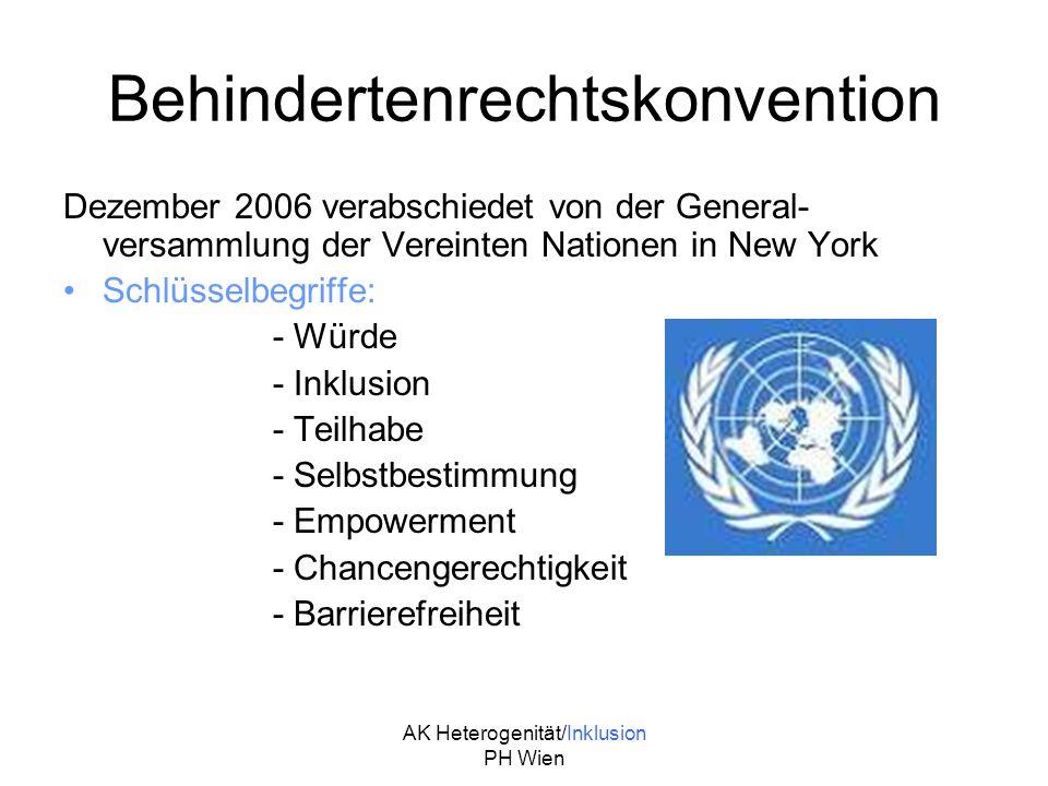 Behindertenrechtskonvention