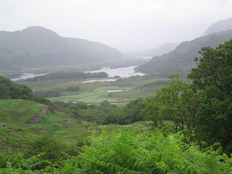 Irish Folk Allgemein Geschichte der irischen Volksmusik