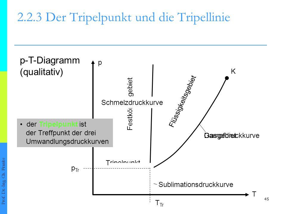 2.2.3 Der Tripelpunkt und die Tripellinie