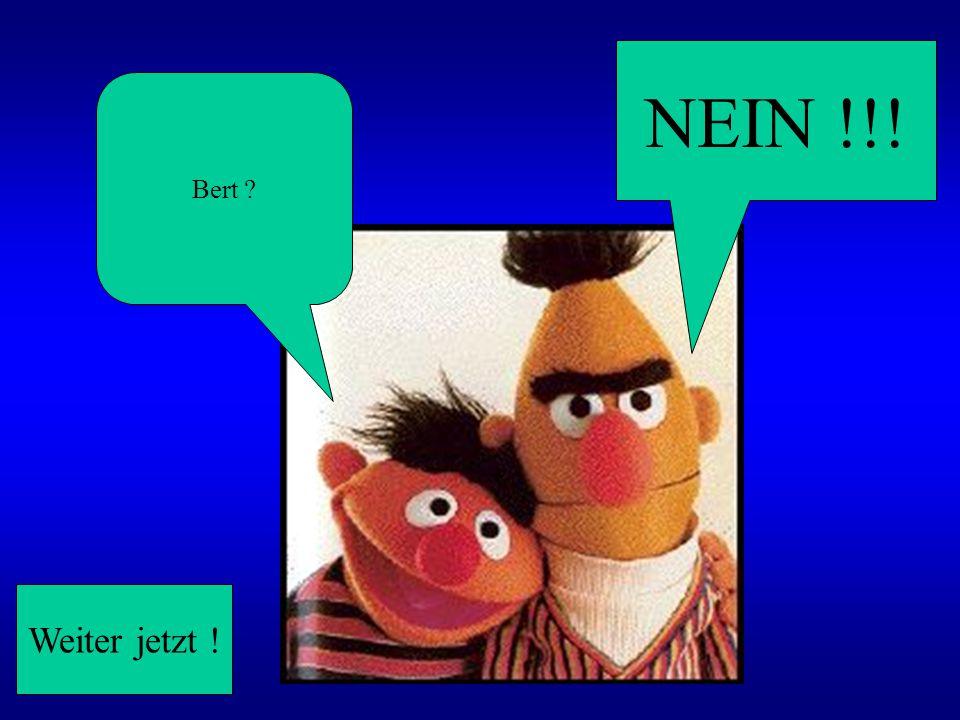 NEIN !!! Bert Weiter jetzt !