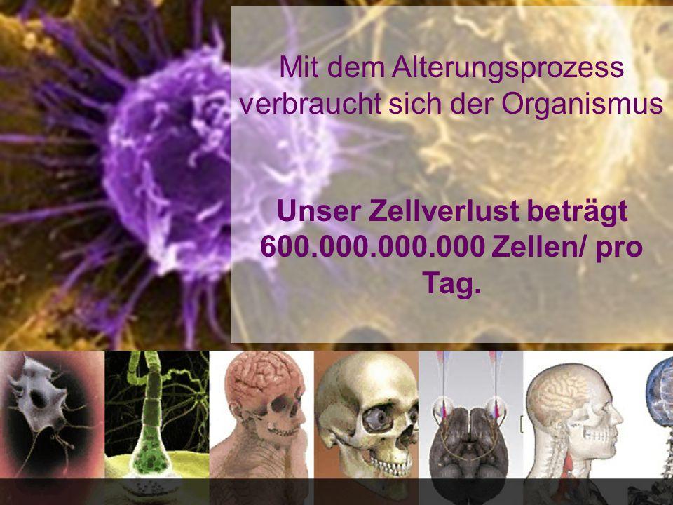 Mit dem Alterungsprozess verbraucht sich der Organismus Unser Zellverlust beträgt 600.000.000.000 Zellen/ pro Tag.