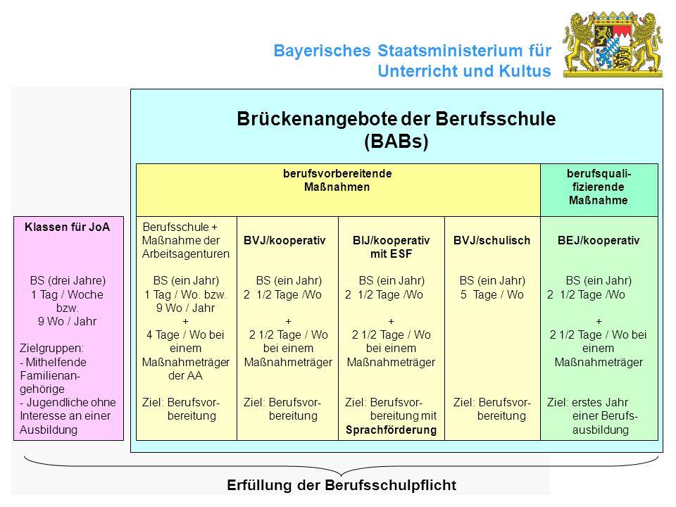 Brückenangebote der Berufsschule (BABs)