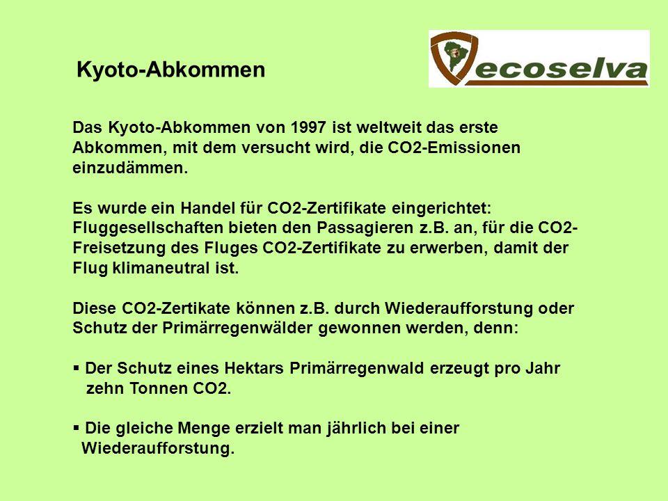 Kyoto-Abkommen Das Kyoto-Abkommen von 1997 ist weltweit das erste Abkommen, mit dem versucht wird, die CO2-Emissionen einzudämmen.