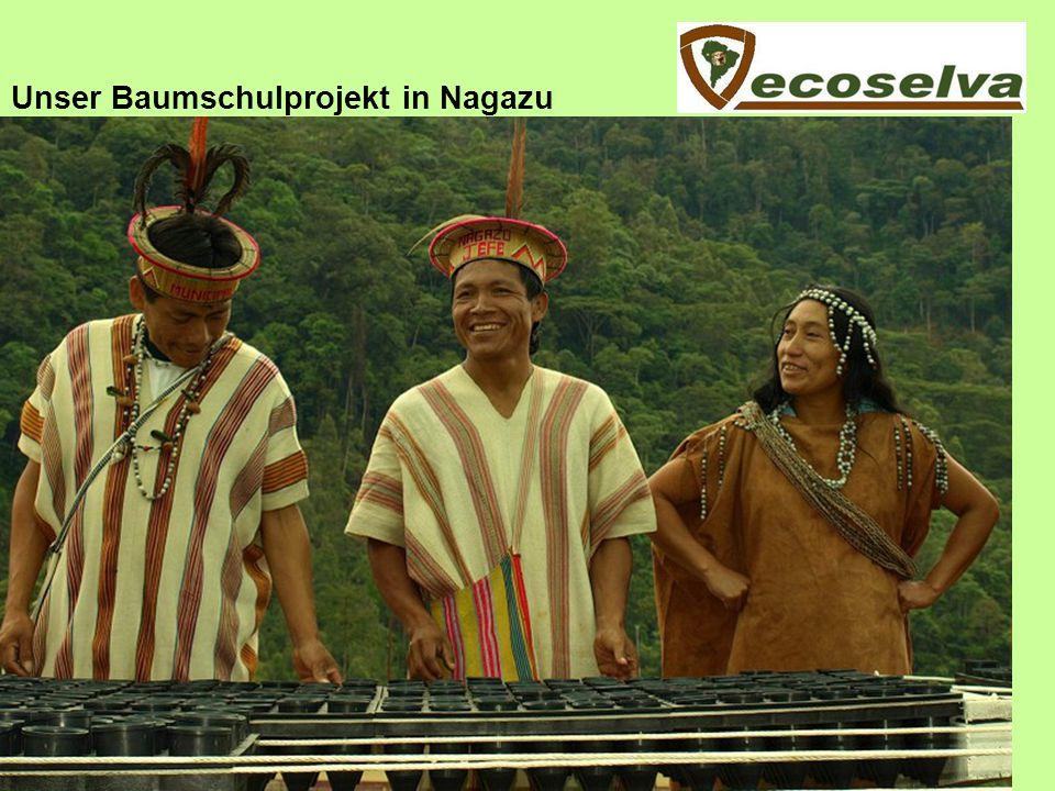 Unser Baumschulprojekt in Nagazu