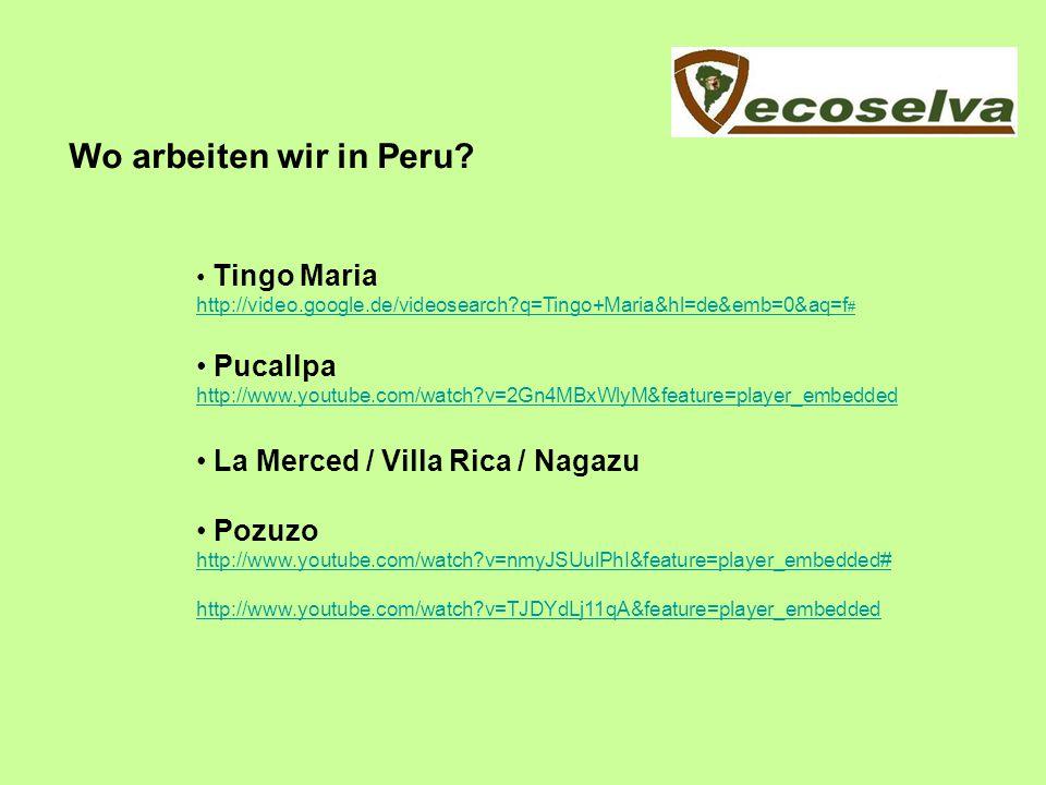 Wo arbeiten wir in Peru Pucallpa La Merced / Villa Rica / Nagazu
