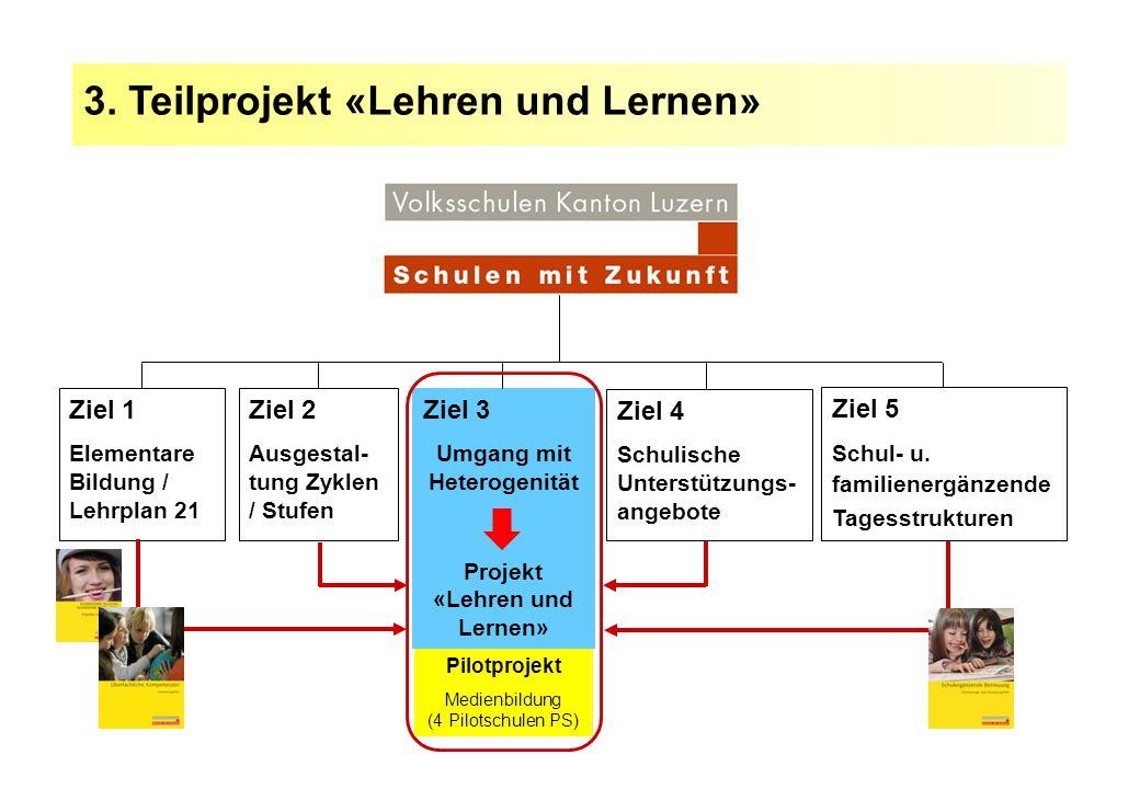 Umgang mit Heterogenität Projekt «Lehren und Lernen»