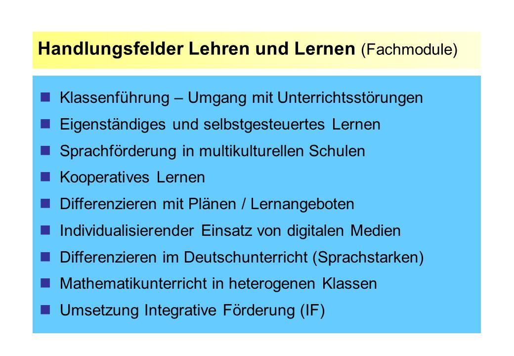 Handlungsfelder Lehren und Lernen (Fachmodule)