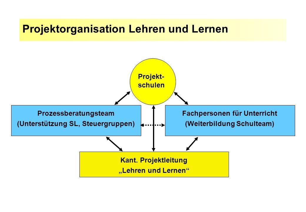 Prozessberatungsteam (Unterstützung SL, Steuergruppen)