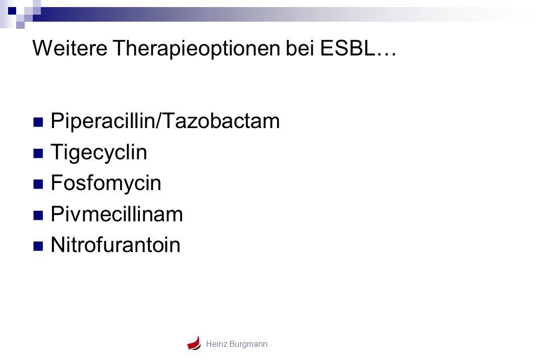 Weitere Therapieoptionen bei ESBL…