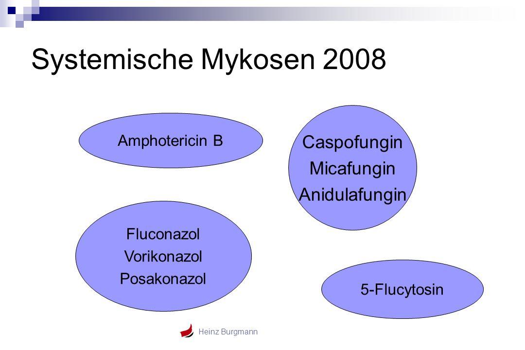 Systemische Mykosen 2008 Caspofungin Micafungin Anidulafungin