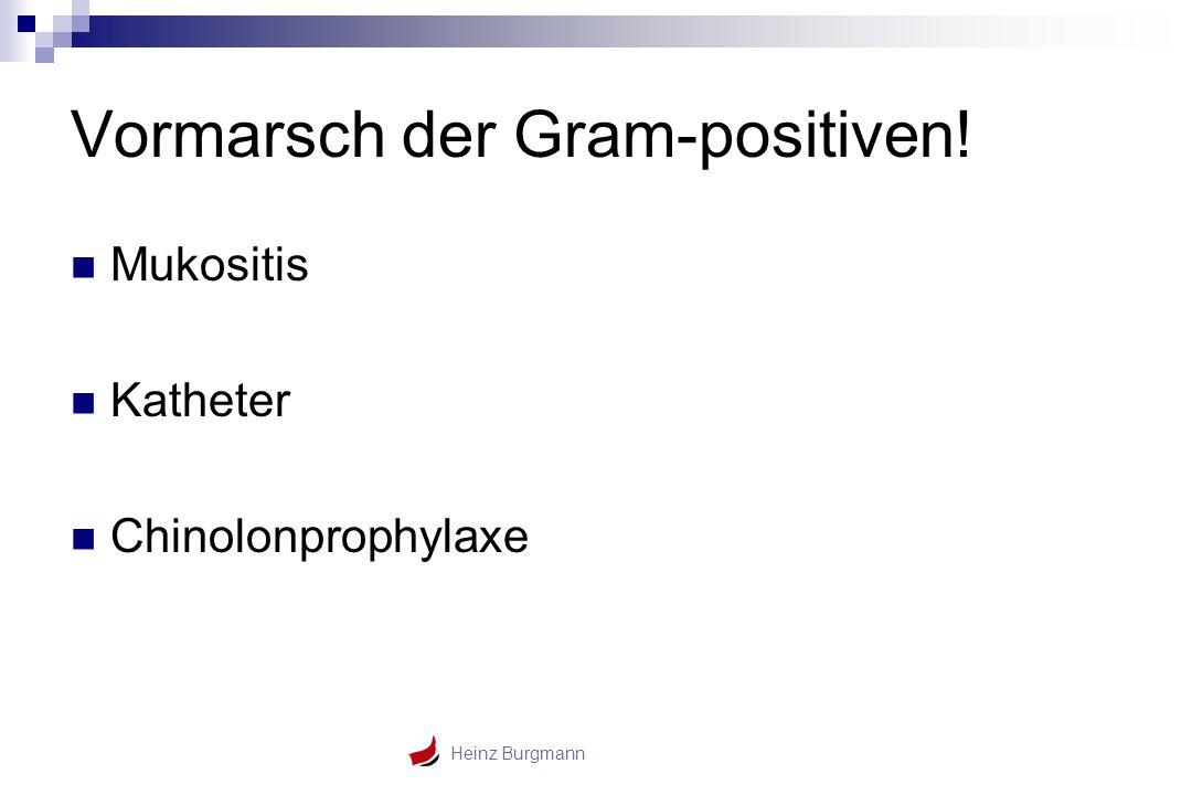 Vormarsch der Gram-positiven!