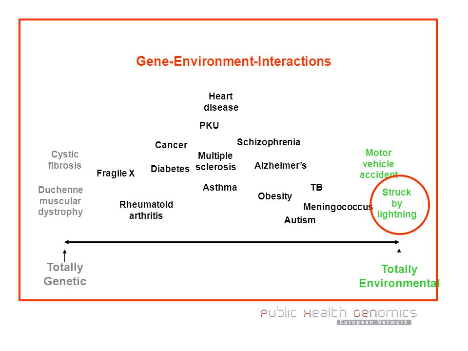 Gene-Environment-Interactions