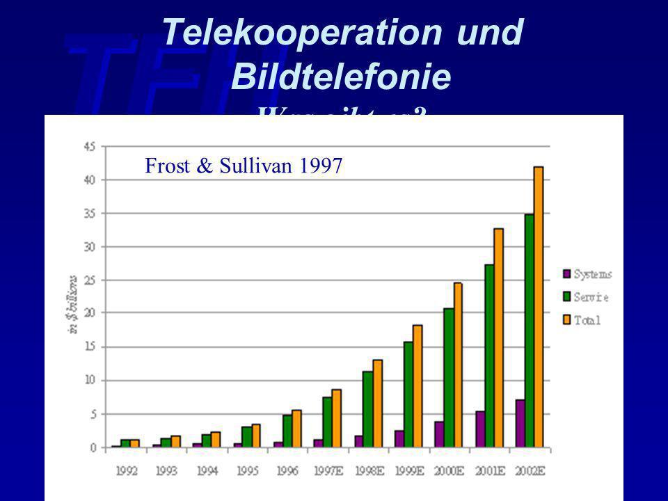 Telekooperation und Bildtelefonie Was gibt es