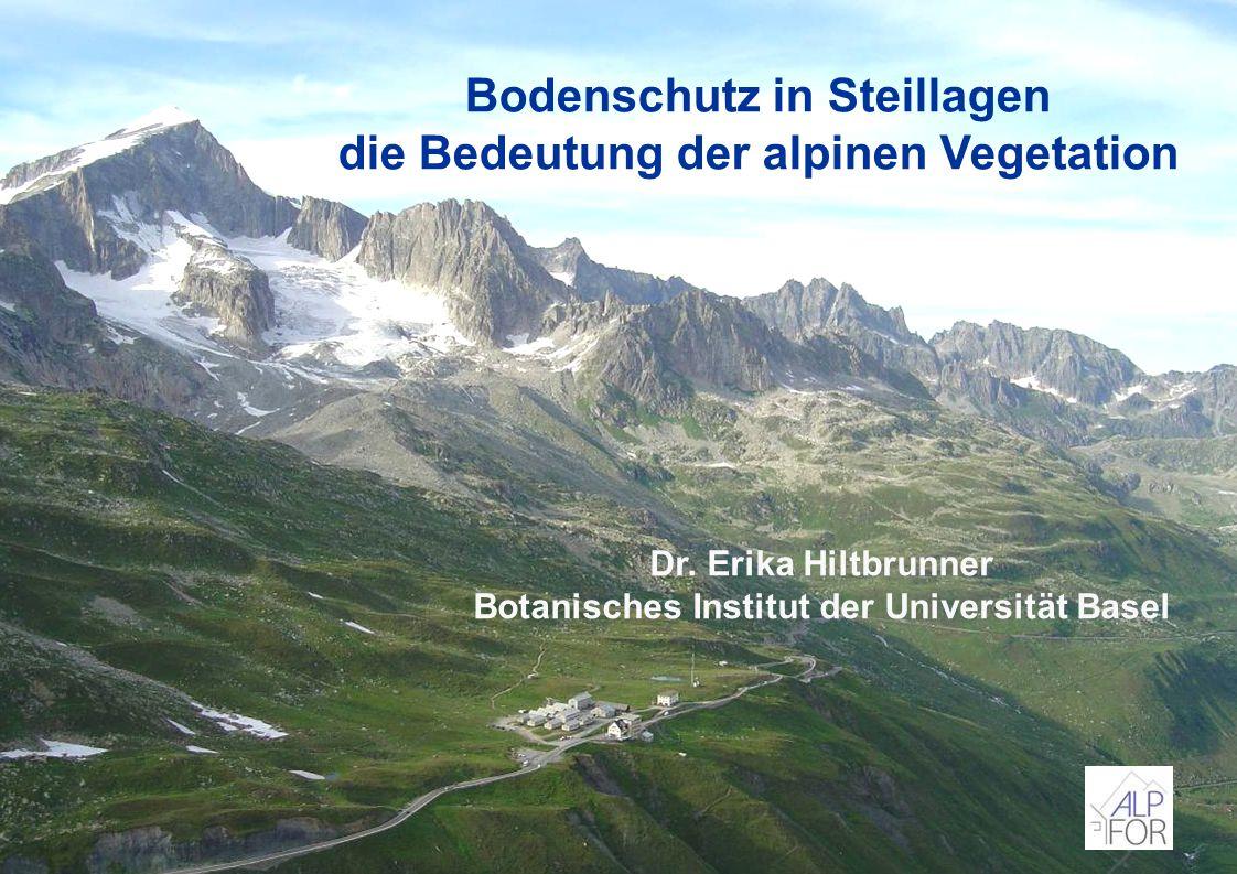 Bodenschutz in Steillagen die Bedeutung der alpinen Vegetation