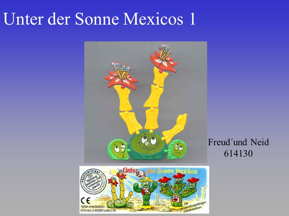 Unter der Sonne Mexicos 1
