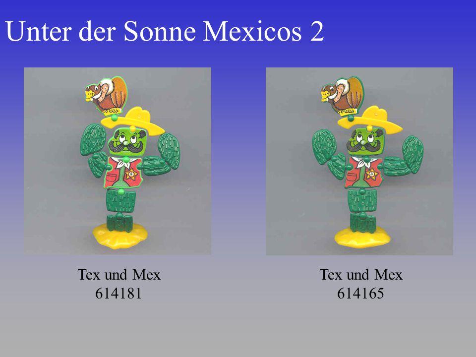 Unter der Sonne Mexicos 2