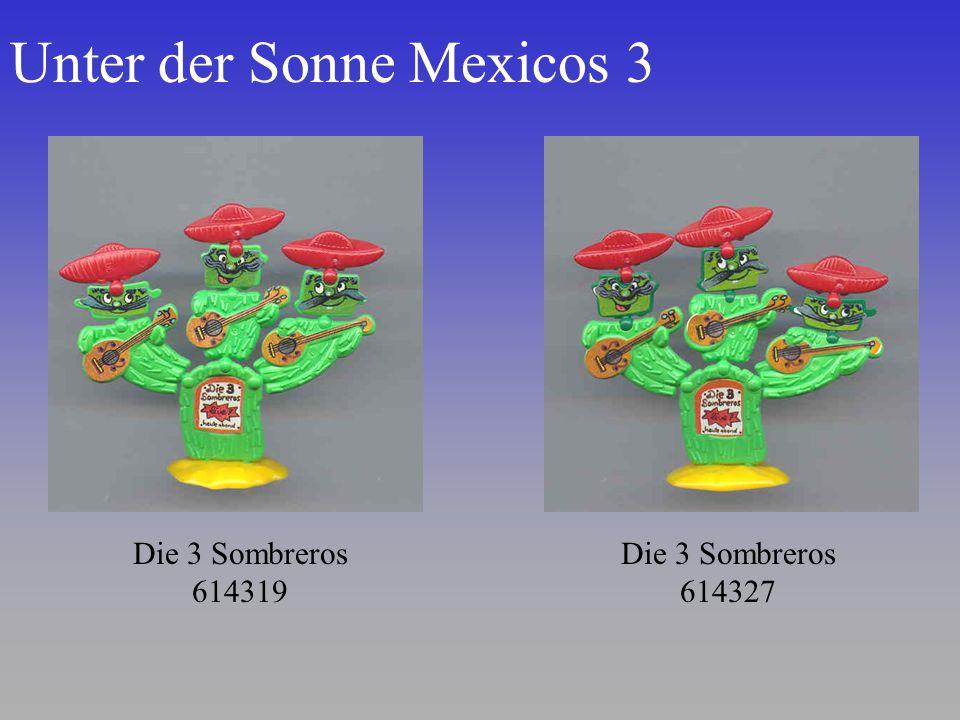 Unter der Sonne Mexicos 3