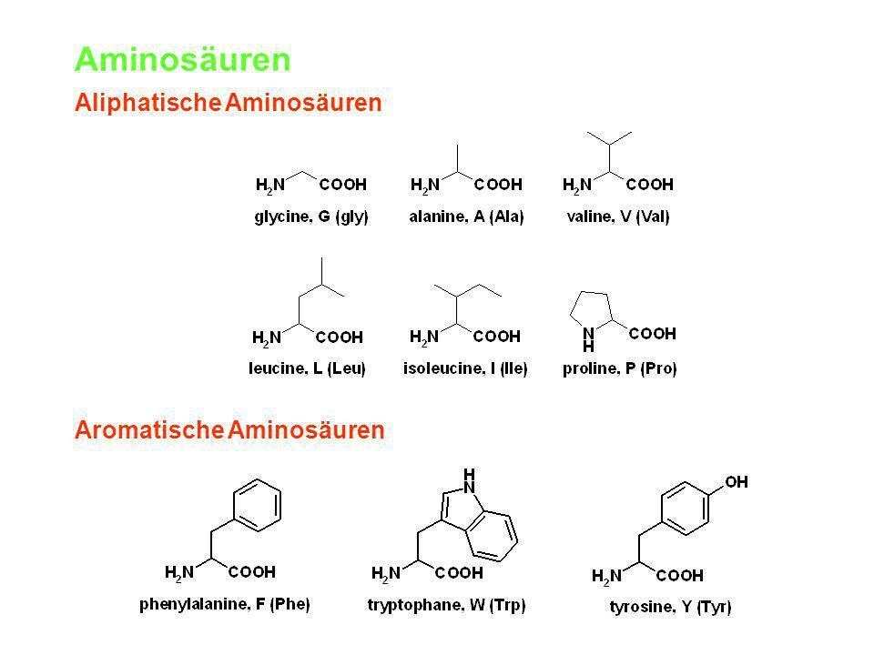Aminosäuren Aliphatische Aminosäuren Aromatische Aminosäuren